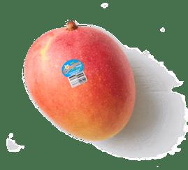 Produce-LR_Calypso-Mangoes_single_etched-1
