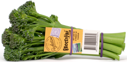 Produce_LR_Broccolini_2019_Bunch_Tag_3_etched-1