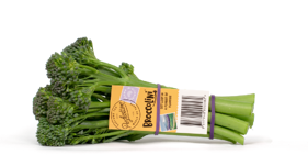 Produce_LR_Broccolini_2019_Bunch_Tag_3_etched