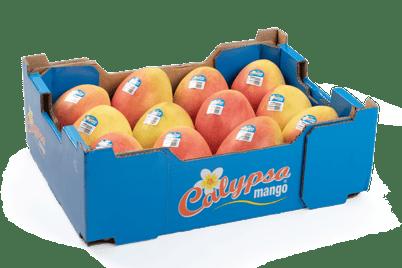 Produce_LR_Calypso mango_carton tray 12-5-1