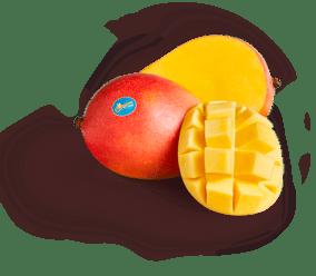 Produce_LR_Calypso_styled_6_etch_mango only