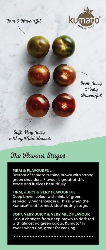 Kumato tomato Flavour Stages
