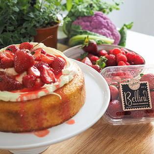 recipe-silvia-colloca-yoghurt-cake