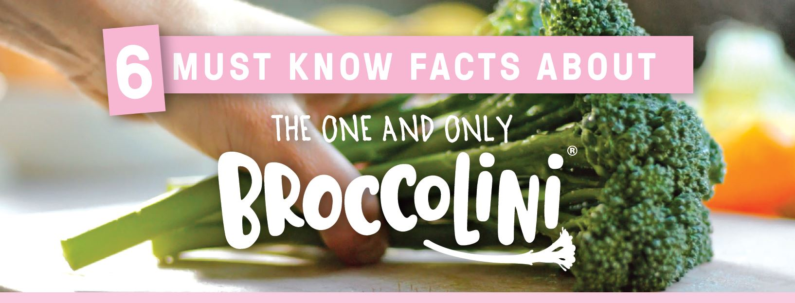 Broccolini One and Only Banner-2